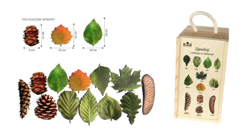 Drewniane liście i szyszki