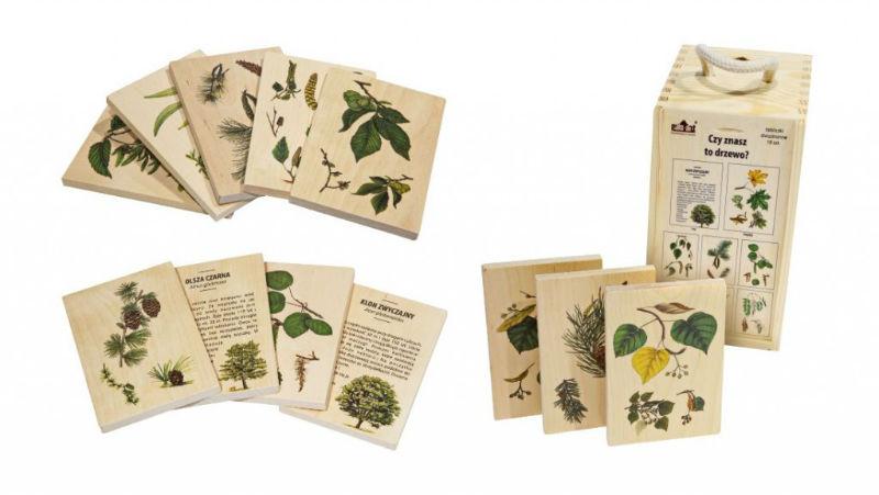 zestaw do rozpoznawania drzew