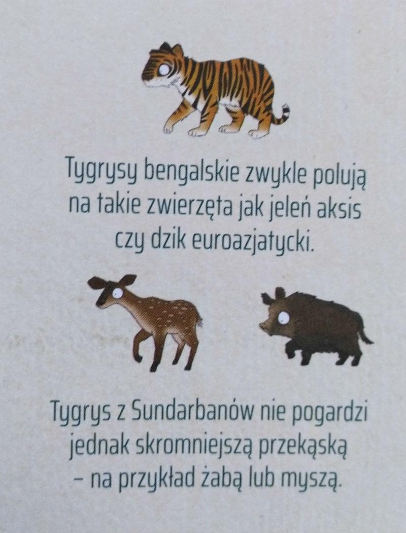 książka przyrodnicza dla przedszkolaka